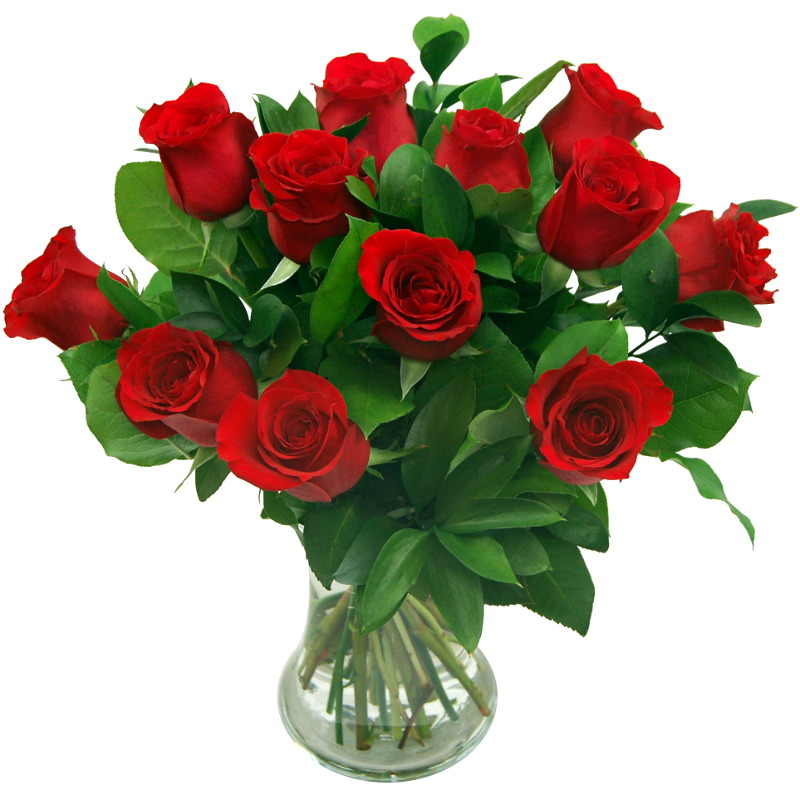 Stockists of 12 Red Roses - True Romance