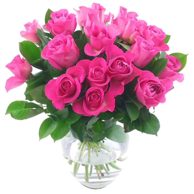 Stockists of 20 Pink Roses Bouquet