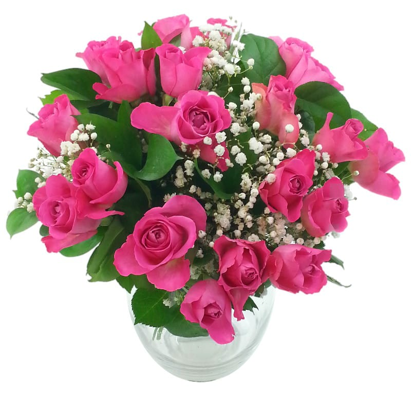 Stockists of 20 Pink Roses with Gyp