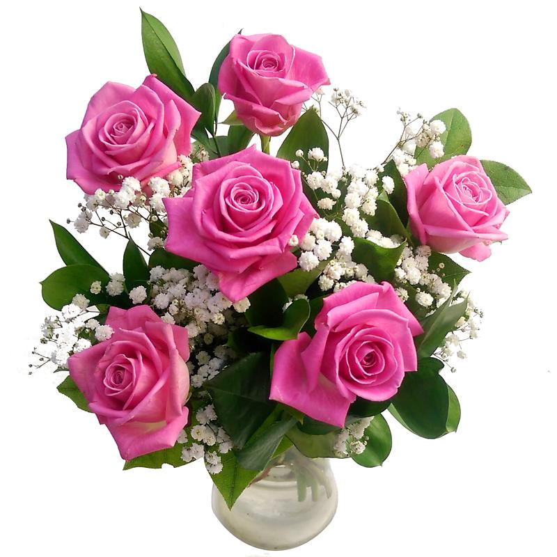 Stockists of 6 Pink Roses Bouquet