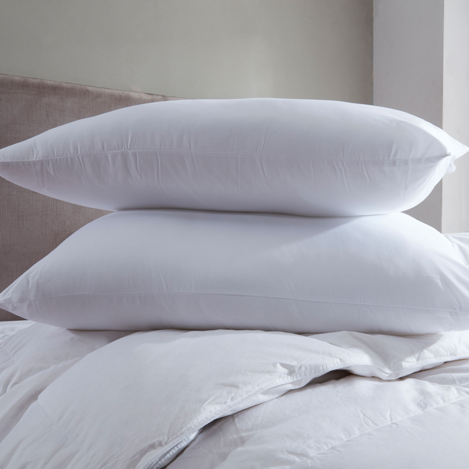 Bargain Bounce Back Pillow - Medium Firm Support (Pair) Stockists