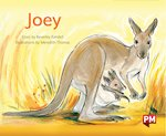 Bargain PM Green: Joey (PM Storybooks) Level 14 x 6 Stockists
