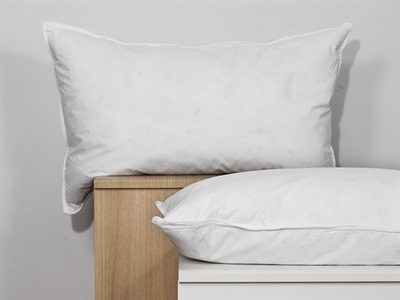 Bargain The Soft Bedding Company Landlord White Duck Feather Pillow Stockists
