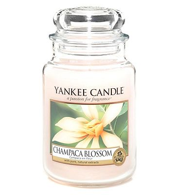Bargain Yankee Candle Classic large jar candle   Champaca Blossom Stockists